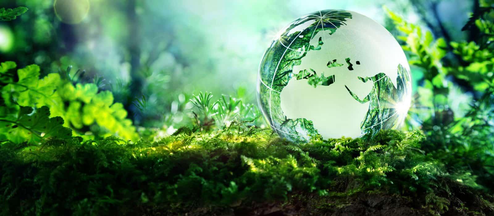 Environmental-Studies-Banner1